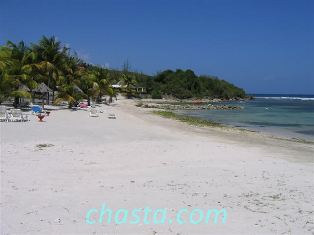 plage anse a la barque photos de guadeloupe. Black Bedroom Furniture Sets. Home Design Ideas